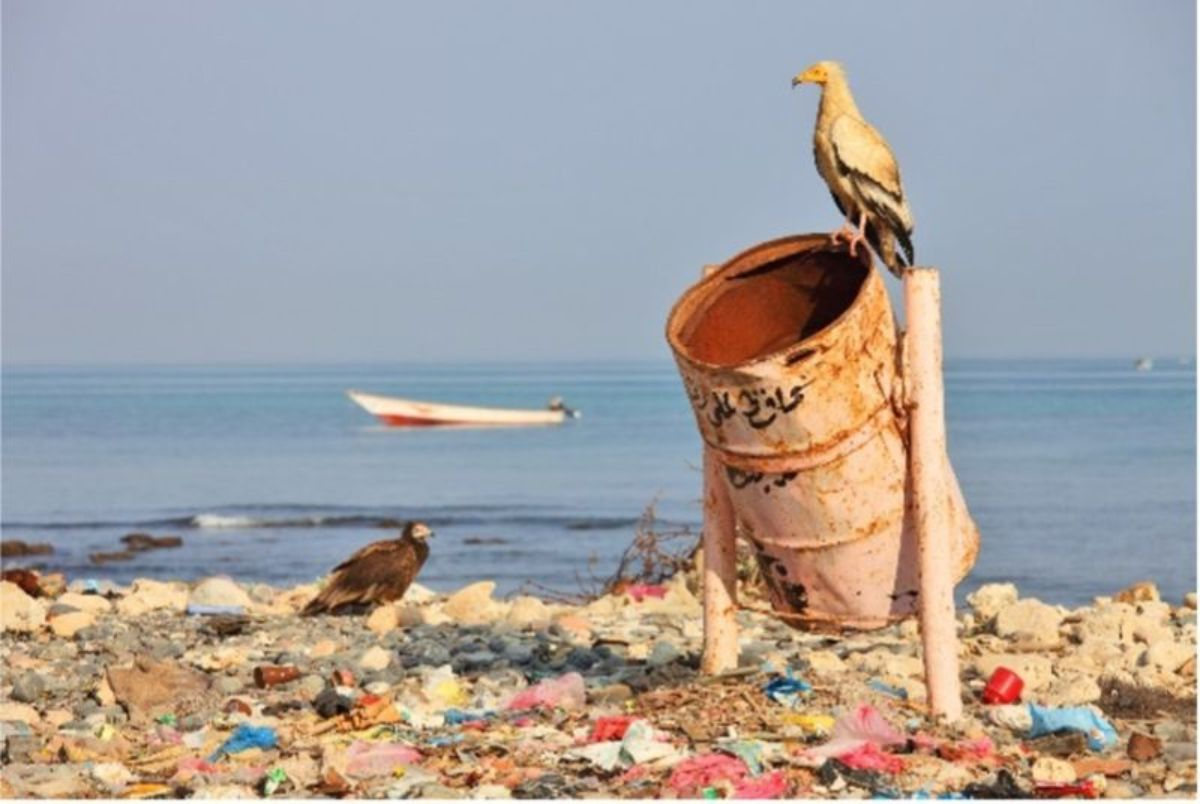concrete-bin-litter-beach-min